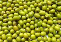 农药生产厂家告诉大家:如何防治绿豆锈病?