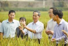 """""""小农经济""""如何融入农业现代化进程"""