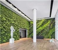 模块式植物墙