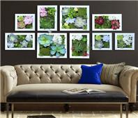 3D植物画框