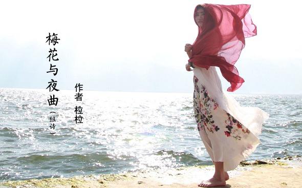 青年诗人柆柆:梅花与夜曲