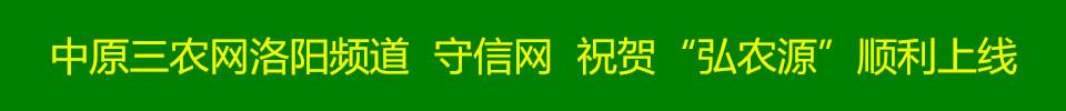 中原三农网洛阳频道