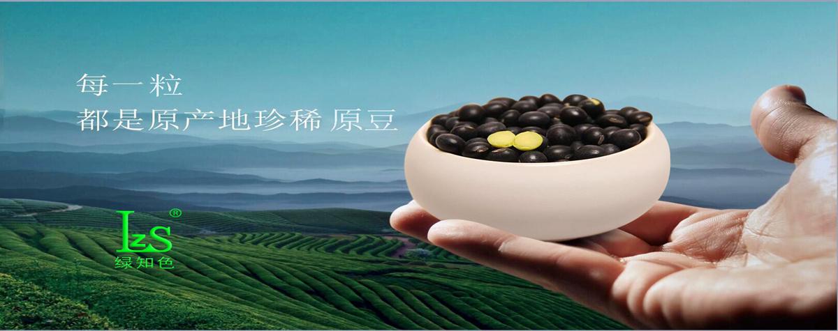 绿知色 黑豆茶 养生茶