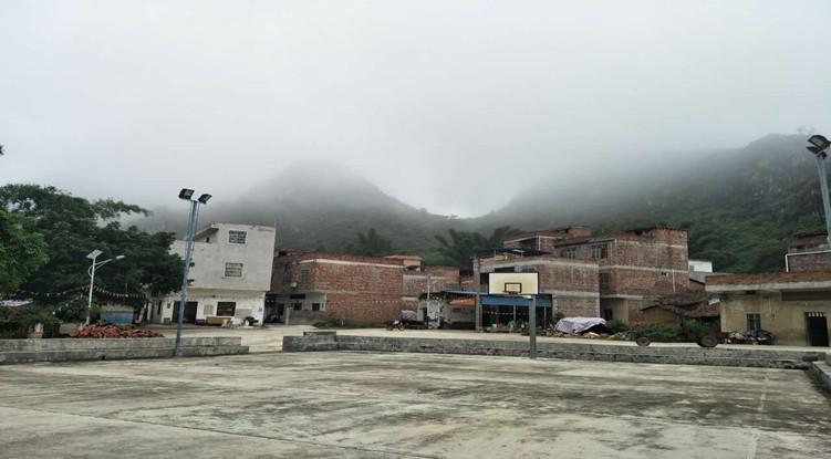 上林方桂红:带领村民探索致富路