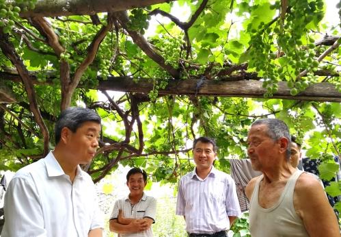 崔涛主任到第一书记村调研并走访慰问困难党员
