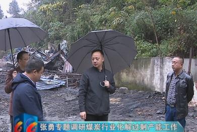 视频 |张勇专题调研煤炭行业化解过剩产能工作