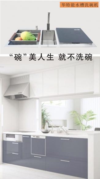 华特能水槽洗碗机 X3-A