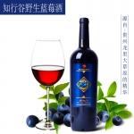 知行谷蓝莓酒,敬漂泊的你!