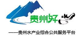 首页-贵州好水