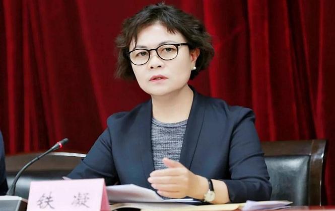 中国作协主席铁凝到陕调研并召开座谈会