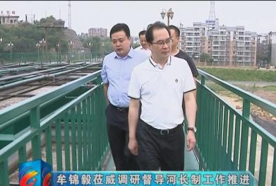视频|牟锦毅莅威调研督导河长制工作推进情况