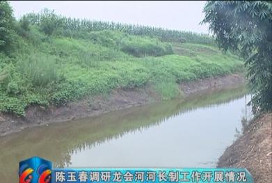 视频|陈玉春调研龙会河河长制工作开展情况