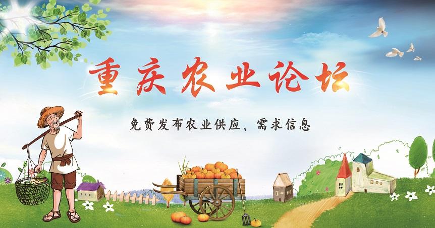 重庆农业论坛
