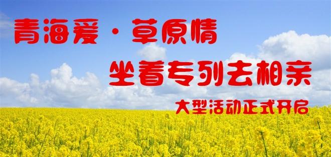 青海爱草原情