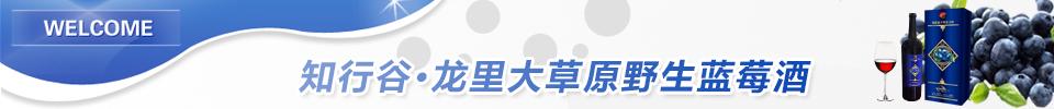 贵州知行谷电子商务有限公司品牌入驻招商方案