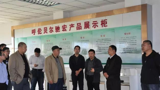 国家发改委经济研究所室主任杜飞轮到呼伦贝尔驰宏调研
