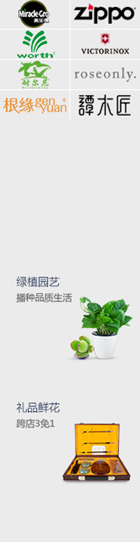 礼物 绿植