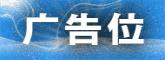 中国赛鸽宝典网