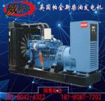 帕金斯柴油发电机