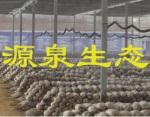 源泉生态农业有限公司