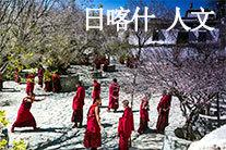 西藏日喀则 人文(分会群编号:54995