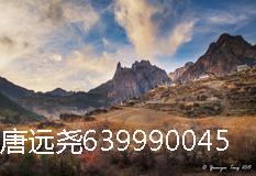 唐远尧(639990045)