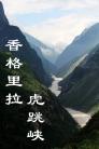 云南迪庆-虎跳峡(群编号:53984,Q