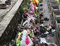 """清明节过后 墓区被祭扫垃圾""""围攻"""""""
