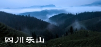 四川乐山(分会群编号:51989,QQ群