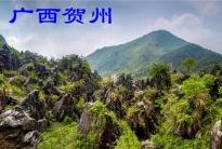 广西贺州(分会群编号:45989,QQ群