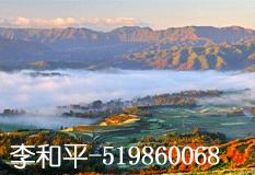 李和平(519860068)