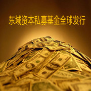 【Oriental domain private equity fund global issue】