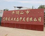 湛河区艺隆农业生态