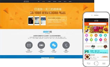 营销型网站/微信
