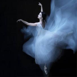 演出策划,舞蹈类