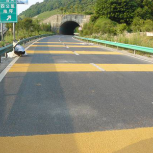 江苏泰州非机动车慢行道