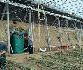 大棚种植bwin 官方