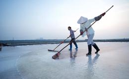 福建泉州百年盐场的繁忙伏收季