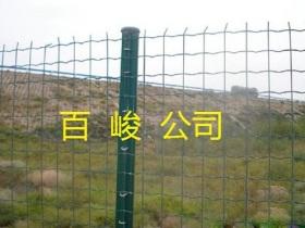 荷兰网公路围栏