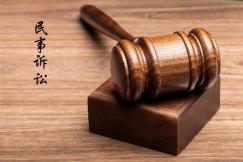 民事诉讼服务