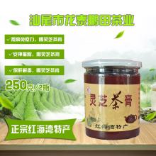【电商扶贫 助农为乐】汕尾红海湾特产灵芝茶膏2瓶250克