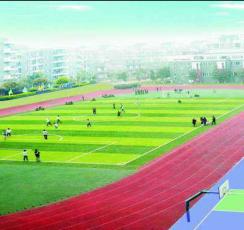 学校体育场