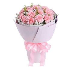 戴安娜粉红玫瑰情人