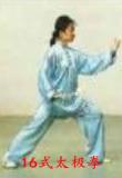 16式太极拳套路在线教与学