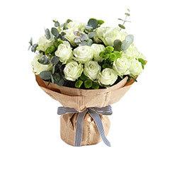 鲜花/梦的光点-雪山白玫瑰