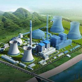 广西柳州电力公司项目