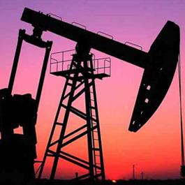 胜利油田项目