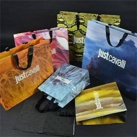 纸质时尚手提袋