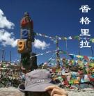 云南迪庆-香格里拉(群编号53984;Q