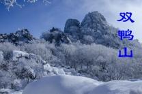 黑龙江双鸭山(群编号:23996,QQ: